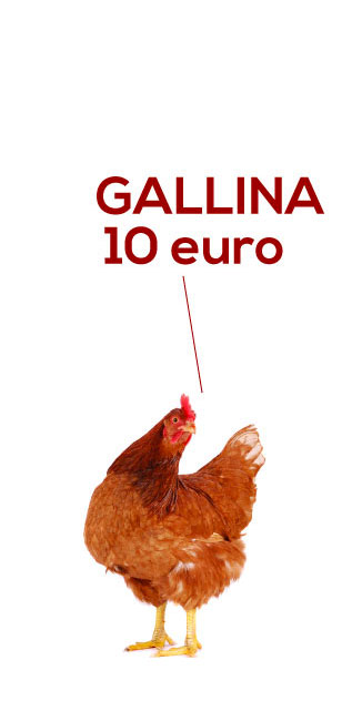 regali solidali gallina